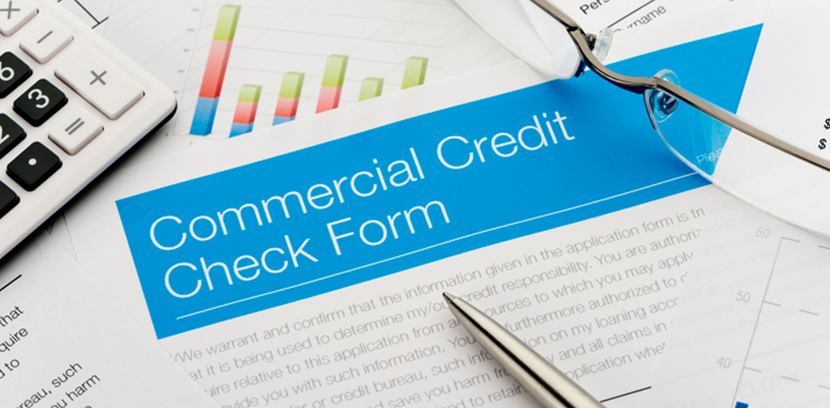 Business Credit Report Data